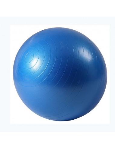 ISE Ballon de gymnastique Anti-éclatement - Ballon d'exercice 55cm de Diamètre avec Pompe Bleu SY-2001BL65-FR